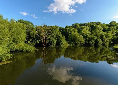 Photograph - Vegetation On The River Avon In Bradford-on-avon by Jacek Wojnarowski