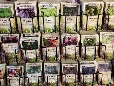 Photograph - Veggie Seed Rack by Patricia E Sundik
