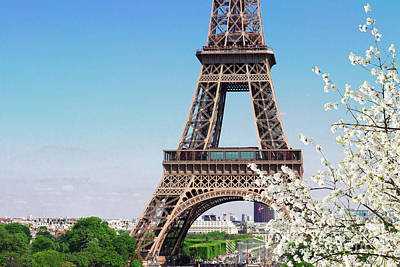 Photograph - Eiffel Tower And Spring by Anastasy Yarmolovich