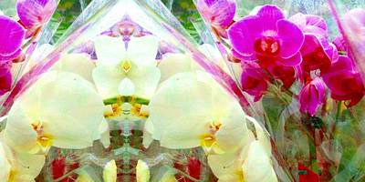 Digital Art - Veiled Orchids 1 by Marianne Dow