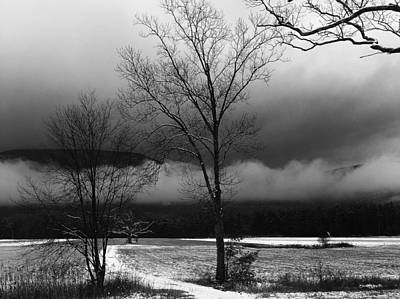 Photograph - Veiling The Kaaterskill In Winter by Terrance De Pietro