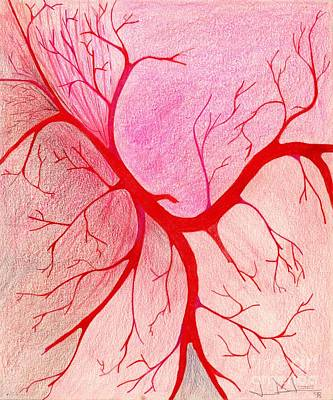 Drawing - Veins Within by George D Gordon III