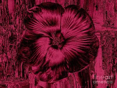 Velvet Hibiscus Print by Marsha Heiken