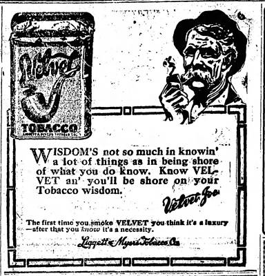 Photograph - Velvet Tobacco 2 by Robert Rhoads