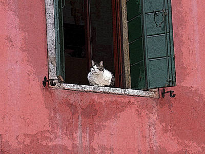 Venetian Cat In Window Art Print