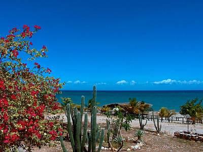 Polaroid Camera - Venezuela Beach, Isle Decoche by Mark J Dunn
