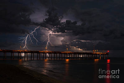 Photograph - Venice Pier Nights by Quinn Sedam