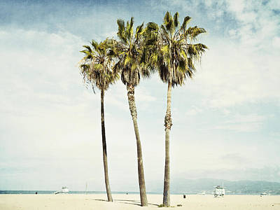 California Coast Photograph - Venice Palms  by Bree Madden