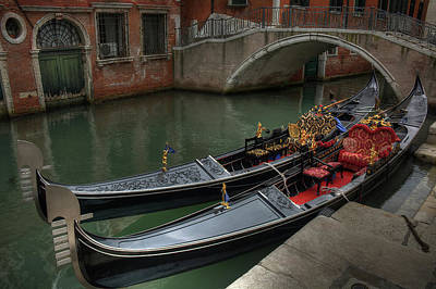 Photograph - Venice Portrait by Michael Kirk