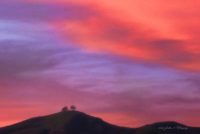 Photograph - Ventura Ca Two Trees At Sunset by John A Rodriguez