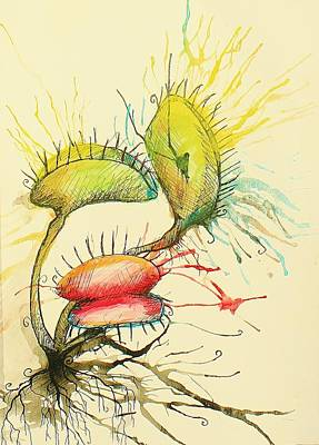 Tim Painting - Venus Fly Trap by Holly Magar