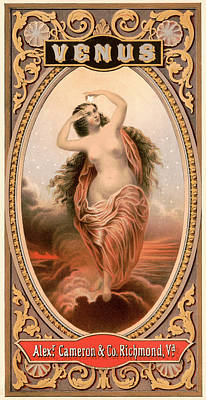 Venus Digital Art - Venus by Gary Grayson