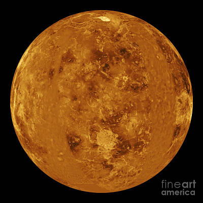 Venus Surface Photograph - Venus, Global View Centered At Long. 0� by Science Source