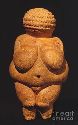 Photograph - Venus Of Willendorf by Granger