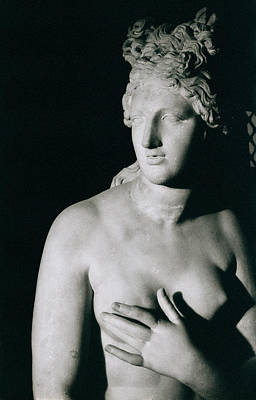 Roman Ancient Photograph - Venus Pudica  by Unknown