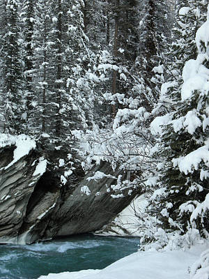 Verdant Creek - Winter 2 Art Print by Stuart Turnbull