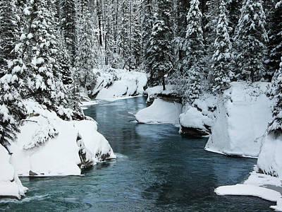 Verdant Creek - Winter 6 Art Print by Stuart Turnbull