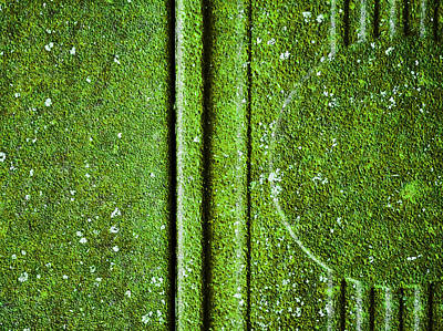 Photograph - Verdure by Tom Druin