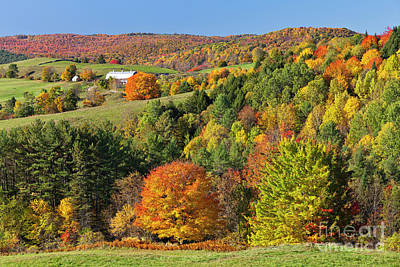 Photograph - Vermont Autumn Landscape by Alan L Graham