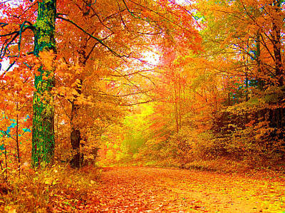 Vermont Autumn Art Print by Vicky Brago-Mitchell