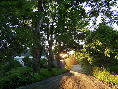 Photograph - Vermont Back Road by Nancy Griswold
