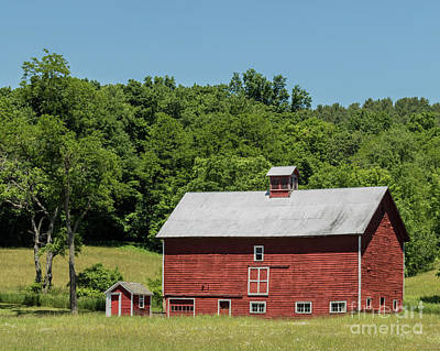 Photograph - Vermont Barn by Phil Spitze