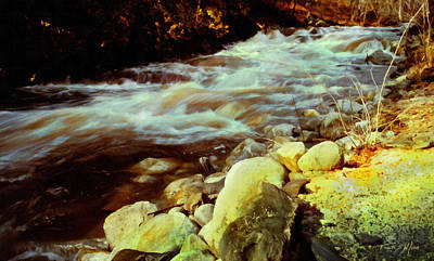 Photograph - Vermont Brook by Frank Wilson