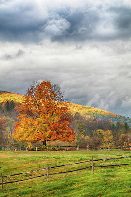 New England Landscapes Photograph - Vermont Fall Colors After The Rain by Jeff Folger