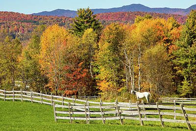 Photograph - Vermont Fall Foliage Above The Farm by Jeff Folger