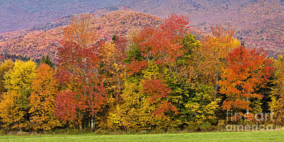 Photograph - Vermont Fall Foliage Panorama by Alan L Graham