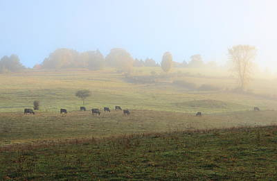 Photograph - Vermont Farm Autumn Morning by John Burk