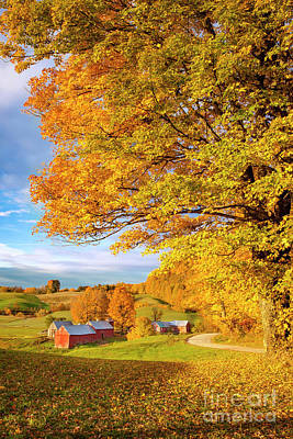 Photograph - Vermont Farm by Brian Jannsen