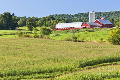 Photograph - Vermont Farm Landscape by Alan L Graham
