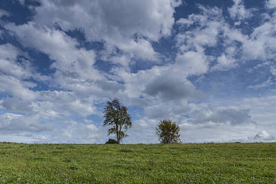 Vermont Hay Field Grass Double Trees Clouds Art Print by Andy Gimino
