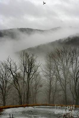 Vermont Mist Art Print by Paula Deutz
