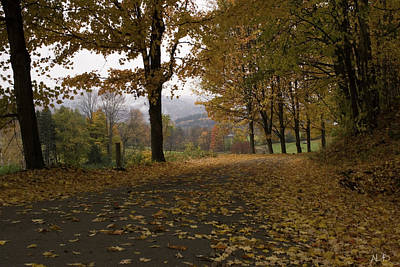 Fall Foliage Photograph - Vermont Roads by April Bielefeldt