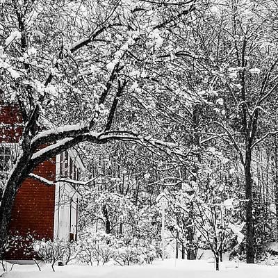 Vermont Snow Day Art Print by Karen Schepartz