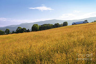 Photograph - Vermont Summer Countryside by Alan L Graham