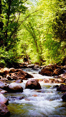 Photograph - Vermont Trout Brook by Frank Wilson