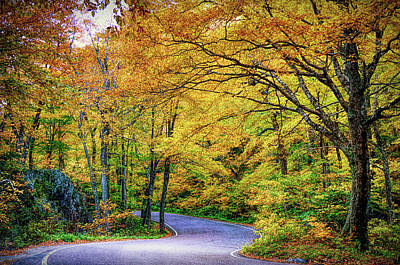 Photograph - Vermont Twisty Road by Jeff Folger