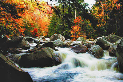 Vermonts Fall Color Rapids Art Print