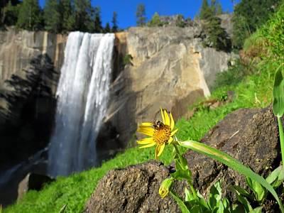 Yosemite Np Photograph - Vernal Falls by Connor Beekman