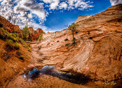 Photograph - Vernal Pool At Zion  by Rikk Flohr