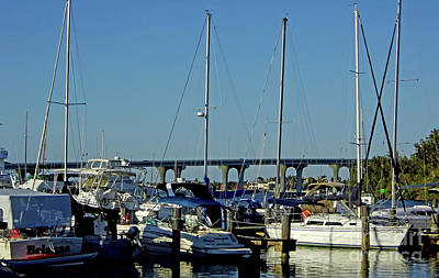 Photograph - Vero Beach City Marina by D Hackett