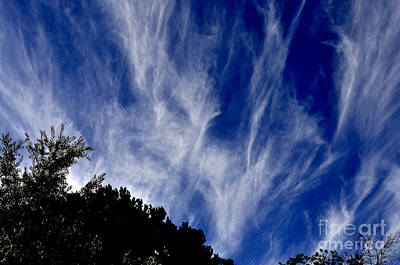 Photograph - Vertical Clouds by Clayton Bruster
