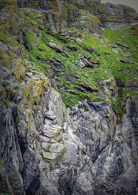 Photograph - Vertical #h0 by Leif Sohlman