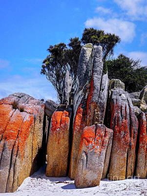 Photograph - Vertical Rocks, Bay Of Fires by Lexa Harpell