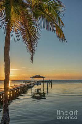 Photograph - Vertical Sunrise  by David Zanzinger