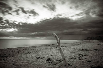 Photograph - Verticale Driftwood At Cavendish Beach by Chris Bordeleau