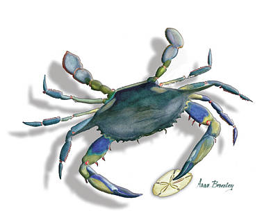 Painting - Very Blue Crab by Anne Beverley-Stamps